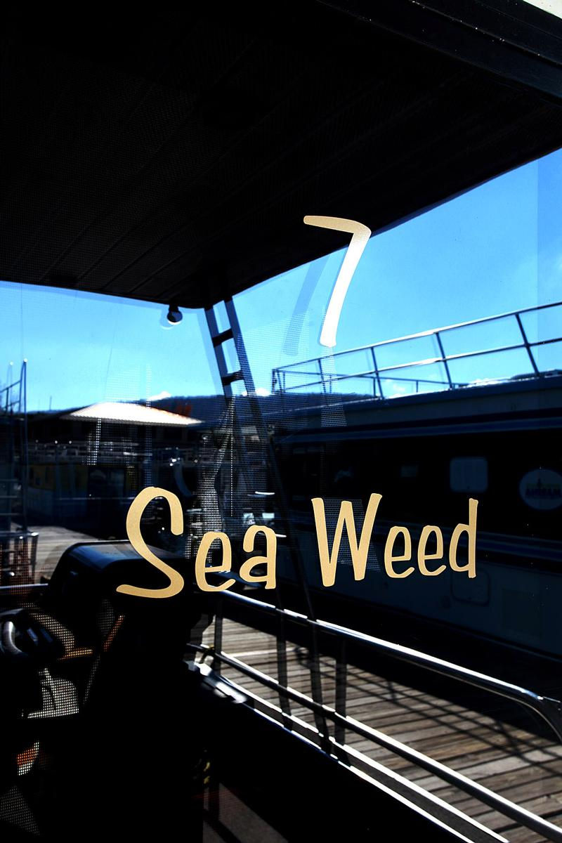 54 Foot Sea Weed Houseboat