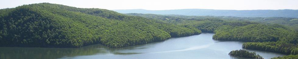 Heavily Forested Raystown Lake (Ed Stoddard)