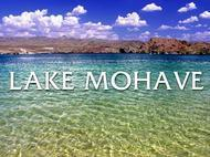 Experience Lake Mohave