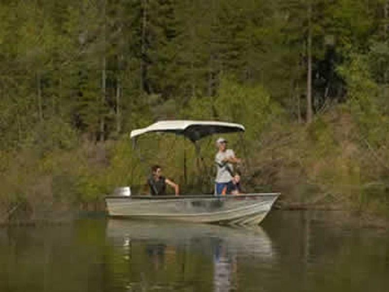 Shasta lake boat rentals more for Lake shasta fishing