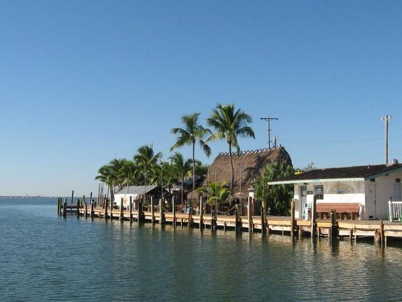 Stroll the marinas dock surrounded by tall palm tress and blue waters Photos