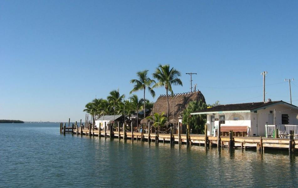 Stroll the marinas dock surrounded by tall palm tress and blue waters