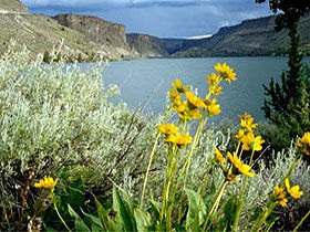 From the Waters of Lake Billy Chinook