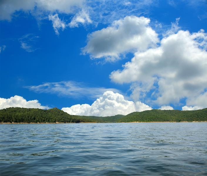 Kentucky Lake is surrounded by luscious green forests and lined with beaches Photos