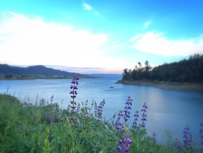 Enjoy the beauty of the great outdoors at Lake Berryessa Photos
