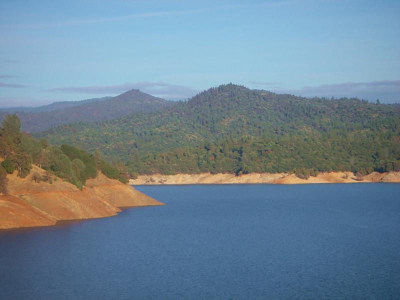 The luscious forests of scenic Lake Oroville