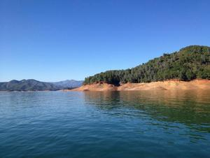 Shasta Lake: Projected Water Levels 2016