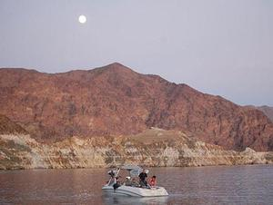 Lake Mead Stripers