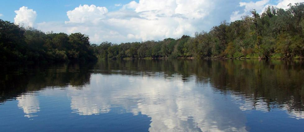 Suwannee River Houseboat Rentals And Vacation Information