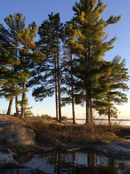 Moor your houseboat at Three Sisters on Lake Kabetogama Photos