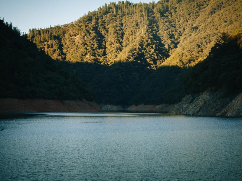 Cool off from a hot day in the sun in the shade at Lake Oroville Photos